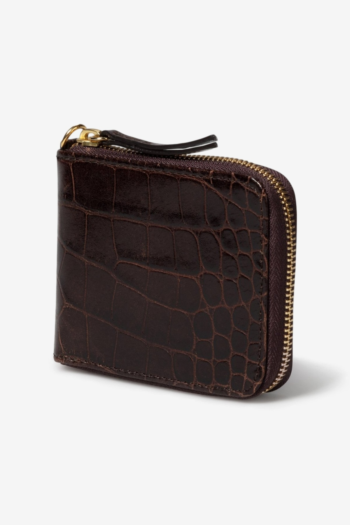 Aries Arise Leather Wallet in Brown