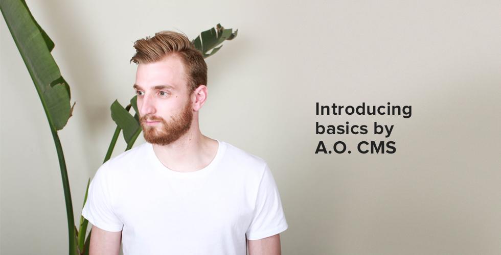 Introducing: A.O. CMS